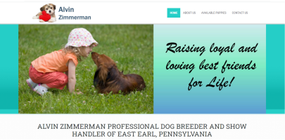 website, amos, alvin, zimmerman, dog, breeder, usda, reports, amos-zimmerman, dog-breeder, alvin-zimmerman, east, earl, pa, pennsylvania, eastearl, puppy, dog, kennels, mill, puppymill, usda, 5-star, ACA, ICA, registered, show handler, Yorkshire, Terrier, 23-A-0005, 23A0005