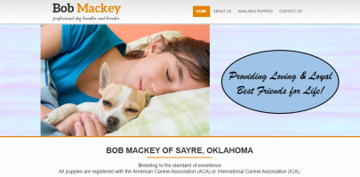 bob, mackey, dog, breeder, website, usda, 73-B-1857, 73B1857, bob-mackey, dog-breeder, sayer, ok, oklahoma, puppies, for, sale, dogbreeder, kennel, inspection, reports, puppy, mill, puppymill, show, reviews