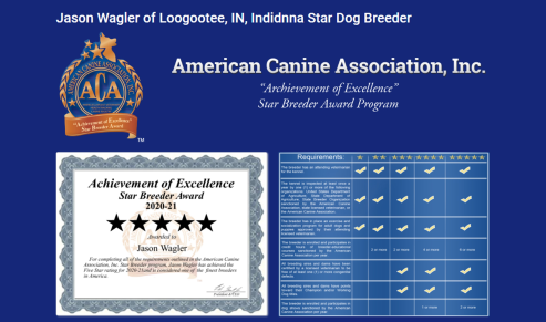 jason, wagler, dog, breeder, ctar-certificate, jason-wagler, dog-breeder, loogootee, in, puppy, dog, kennels, mill, puppymill, usda,  ACA, ICA, registered, show, pug, usda, 34-a-0245, aphis, 34a0245, indiana, inspection, report