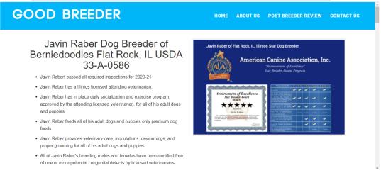 javin, raber, dog, breeder, goodbreeder, javin-raber, dog-breeder, flat, rock, il, illinios, puppy, dog, kennels, mill, puppymill, usda, 5-star, aca, ica, registered, berniedoodle, 33-a-0586, 33a0586