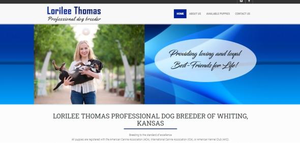 lorilee, thomas, dog, breeder, website, usda, reports, lorilee-thomas, kansas, ks, whiting, puppy, dog, kennels, mill, puppymill, usda, 5-star, ACA, ICA, registered, show handler, Yorkshire, Terrier, 48-B-0329