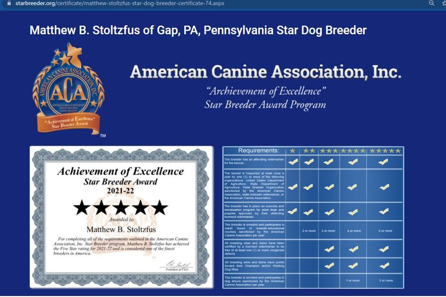 matthew, stoltzfus, dog, breeder, starbreeder, inspections, matthew-stoltzfus, dog-breeder, gap, pa, pennsylvania, bernidoodle, puppy, mill, puppymill, usda, inspection, records, kennel, govenrment, department, agriculture, doglaw