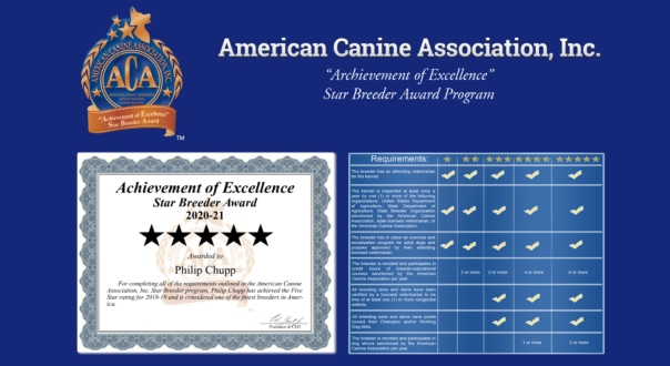 award, Philip, Chupp, dog, breeder, usda, reports, Philip-Chupp, McLeansboro, il, illinios, puppy, dog, kennels, mill, puppymill, usda, 5-star, ACA, ICA, registered, show handler, Yorkshire, Terrier, 33-A-0542
