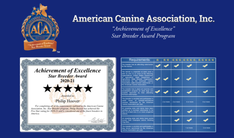 philip, Hoover, dog, breeder, certificate, Philip-Hoover, Memphis, MO, Missouri, puppy, dog, kennels, mill, puppymill, usda, 5-star, ACA, ICA, registered, show handler, Yorkshire, Terrier, 43-A-5673