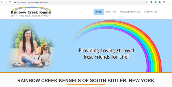 Rainbow, Creek, Kennel, home, homepage, rainbow_creek_kennel, rainbowcreeksouth, butler, ny, new york, breeder, dog, star star-breeder, starbreeder, 5 star, dogs, puppy, puppies, 21-A-0179, 21a0179, kennels, ACA, American, canine, association, dogshow, shows, handler, new-york, puppymill, mill, commercial, professional, USDA